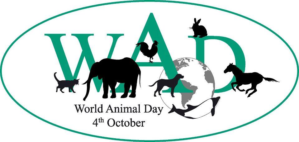 4 Ekim Dünya Hayvan Günü
